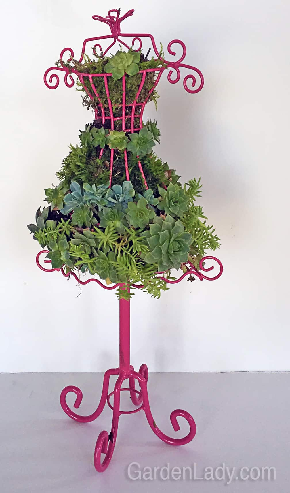 Gardenlady Succulent Craft Projects