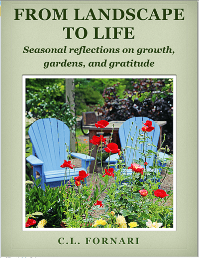 From Landscape to Life iBook