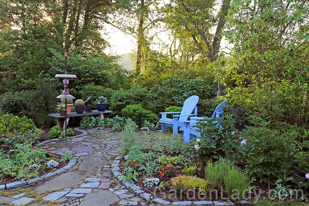 Here is my bird feeder at dawn, before the crowds come in to feed.