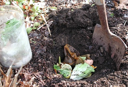 Composting in the Garden