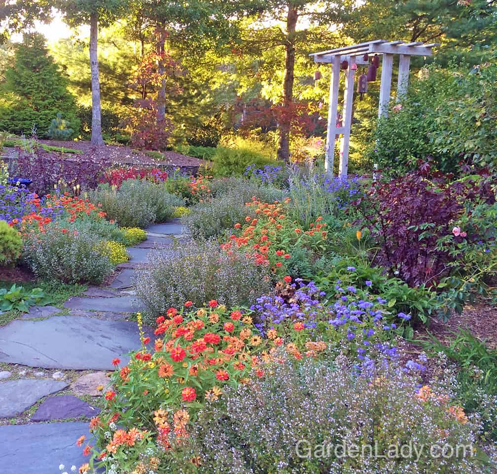 Start with what you have (a perennial bed, front foundation shrubs, or pots on a deck) and add annuals! By poking in some annual plants every spring you'll have color, color, COLOR all summer. #FlowerLove!