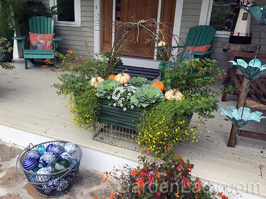 Gardenlady Com Fall Window Box Idea