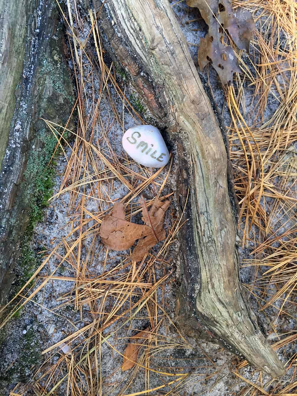 This is the first stone I came across in a woodland.