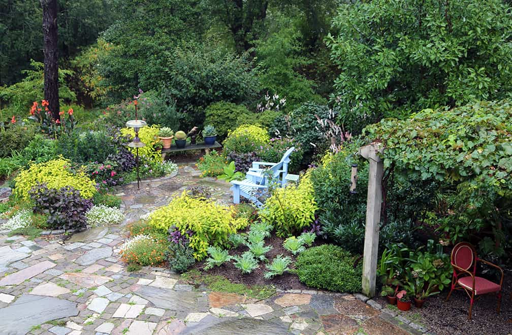 See the Fragrance/Bird garden in its fall glory. Learn what I do with the peony plants in this garden every fall.