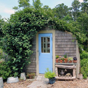 The GardenLady's Blog Pages