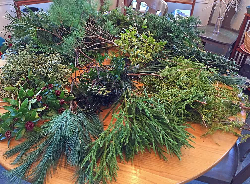 Here are the many colors and textures I came into the house with after cutting three to five branches from assorted evergreen plants in my yard.