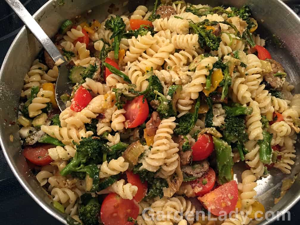 So...what's for dinner? Pasta with squash, broccoli, leeks, garlic and tomatoes. Saute the veggies (not the tomatoes) in olive oil with some hot peppers if desired. Add the pasta and sliced tomatoes, along with a beaten egg. I also had some left-over chicken sausage so this went into the dish as well. Toss all in the saute pan and add some grated parmesan cheese. Season with salt and pepper to taste.
