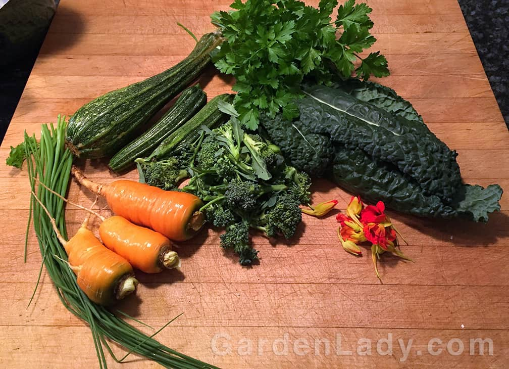 Today I found Costata Romanesco summer squash, kale, broccoli, carrots, parsley, chives and nasturtium buds.
