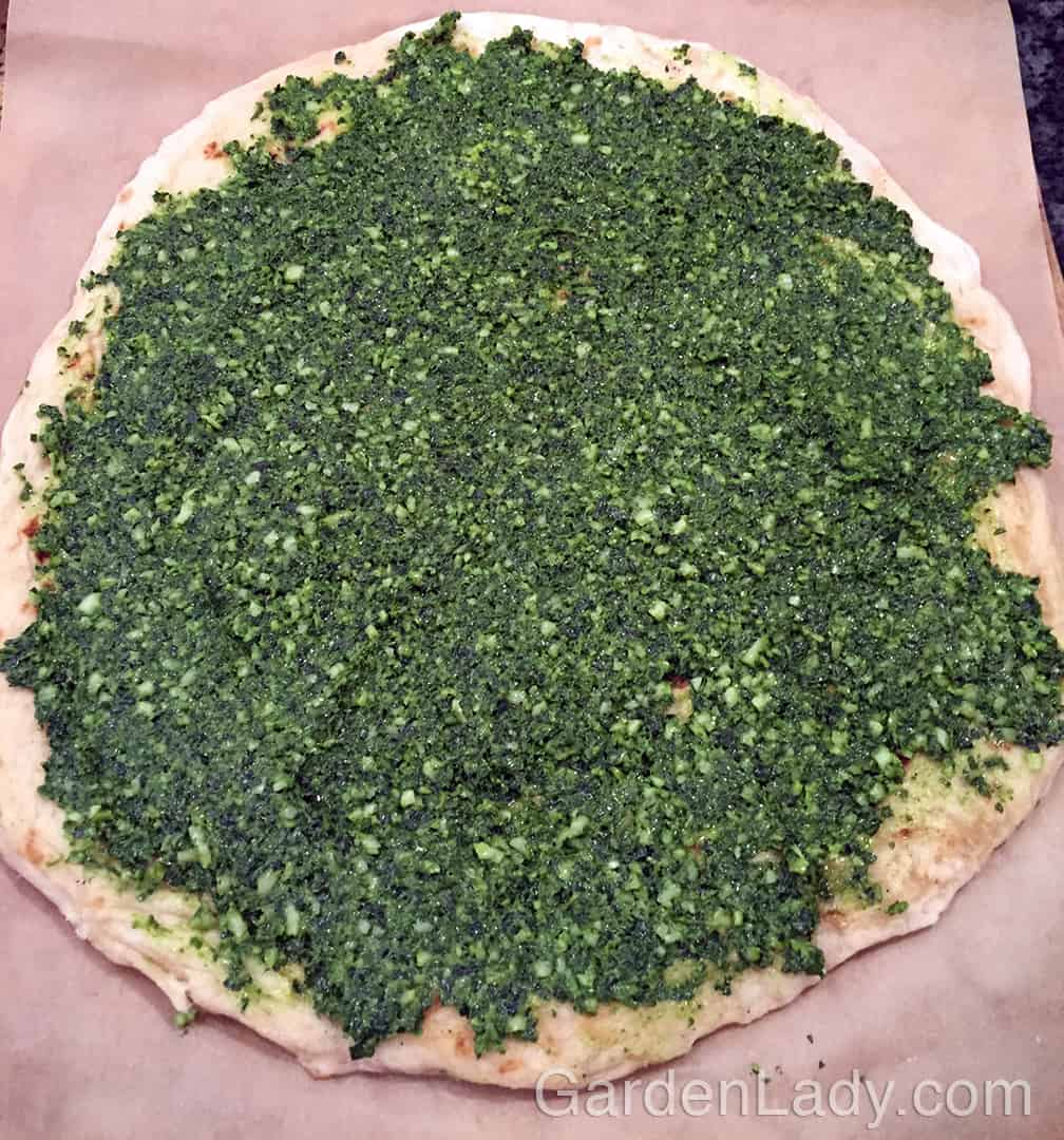 Spread the pesto on the crust. Any extra pesto can be put in a container, covered with olive oil and used for another dish in a day or two. You can also freeze patties of pesto on waxed paper so that you have them for the winter. After the patties are frozen, place them in a plastic bag.
