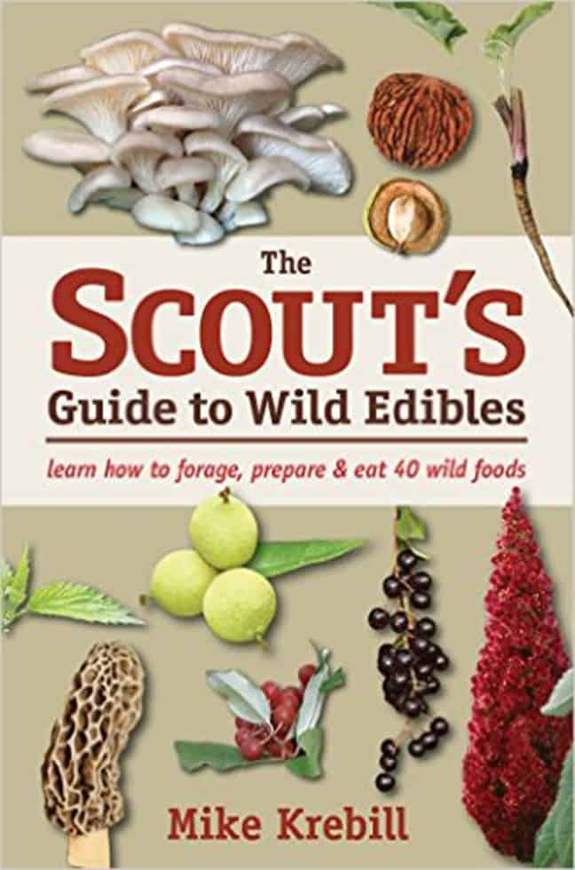 scouts_guide