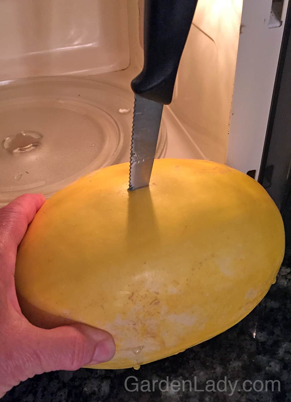 Pierce the squash with a knife in at least 3 places. Then it's less likely that it will explode in the microwave. There's still a slight chance....but less likely.