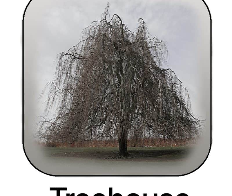 Treehouse ~ The New Social Networking App For Plants
