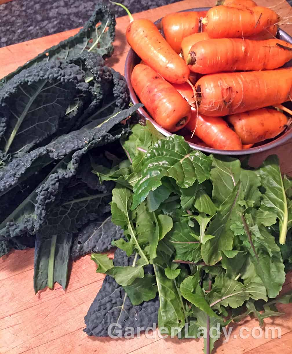 A five minute trip into the veggie garden yielded enough produce for three or more meals.