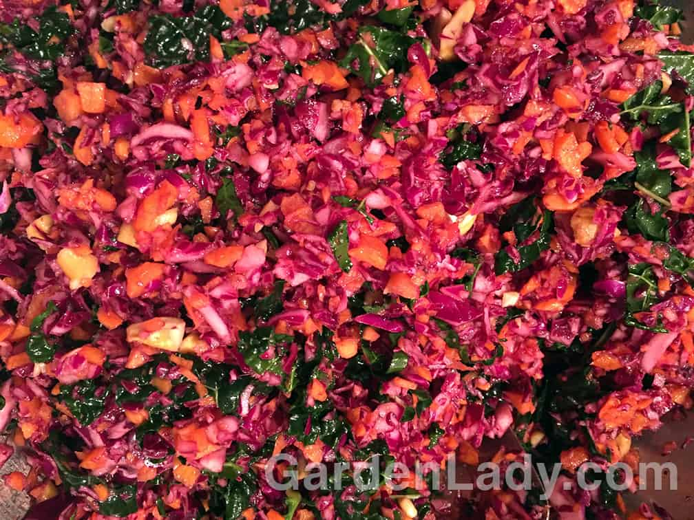 This slaw used carrots, kale, a red cabbage, and fresh ginger. The dressing was made from walnut oil, white vinegar (I would have used rice vinegar but I was out), agave syrup for sweetening, sarachee hot sauce, soy sauce and some sesame oil. I also added some chopped cashews and this proved to be what put this dish over the top.