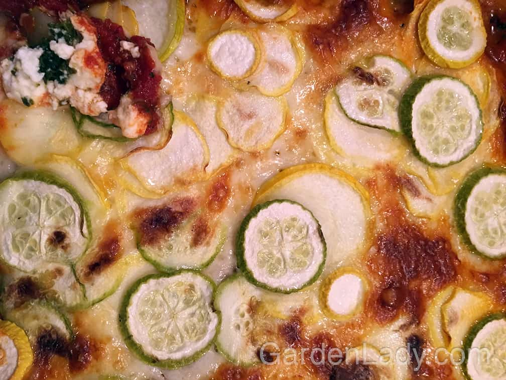 This is a wonderful vegetarian meal that uses up several summer squash.